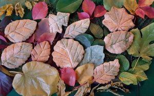 Yaprak Kurabiye Tarifi
