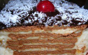 Kakaolu Bisküvili Muhallebili Pasta Tarifi